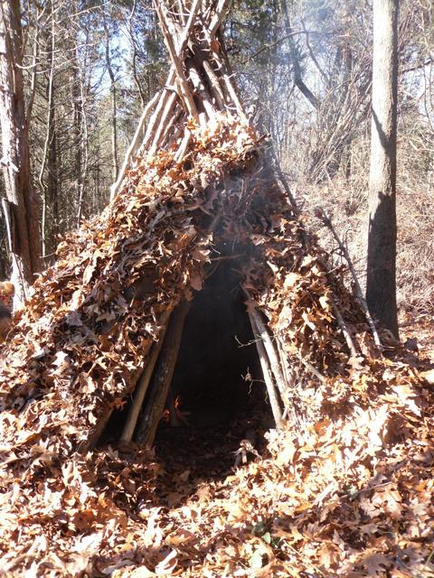 Wikiup-shelter.jpg
